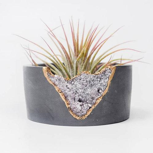Lepidolite Mini Planter | Dark
