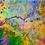 Thumbnail: Colibri