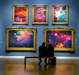 "Collection de toiles ""Symbiose"""