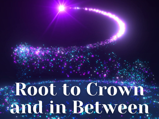 Root to Crown and in Between