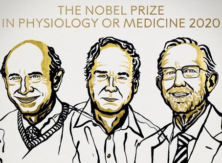 【2020諾貝爾獎】生理醫學獎,來自英美3學者現C肝病毒膺殊榮