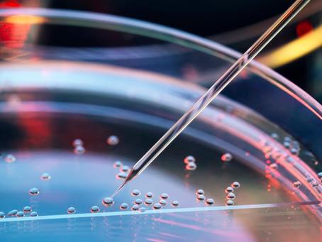 美科學家創新影像技術「SGFT」 準確量化幹細胞早期分化結構