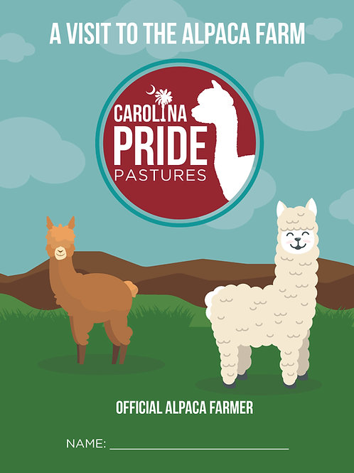 Alpaca Activity Coloring - Coloring Books For Kids - Animal Coloring Book - Digi