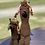Thumbnail: Alpaca Doll