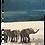 Thumbnail: The Elephant