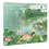 Thumbnail: EL5 - What Is A River?