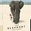 Thumbnail: EL6 - The Elephant