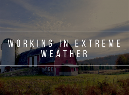 Working in Extreme Weather