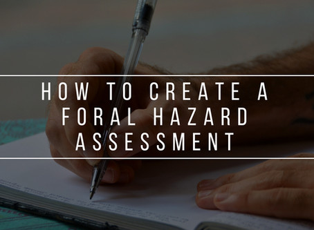 How to Create a Formal Hazard Assessment