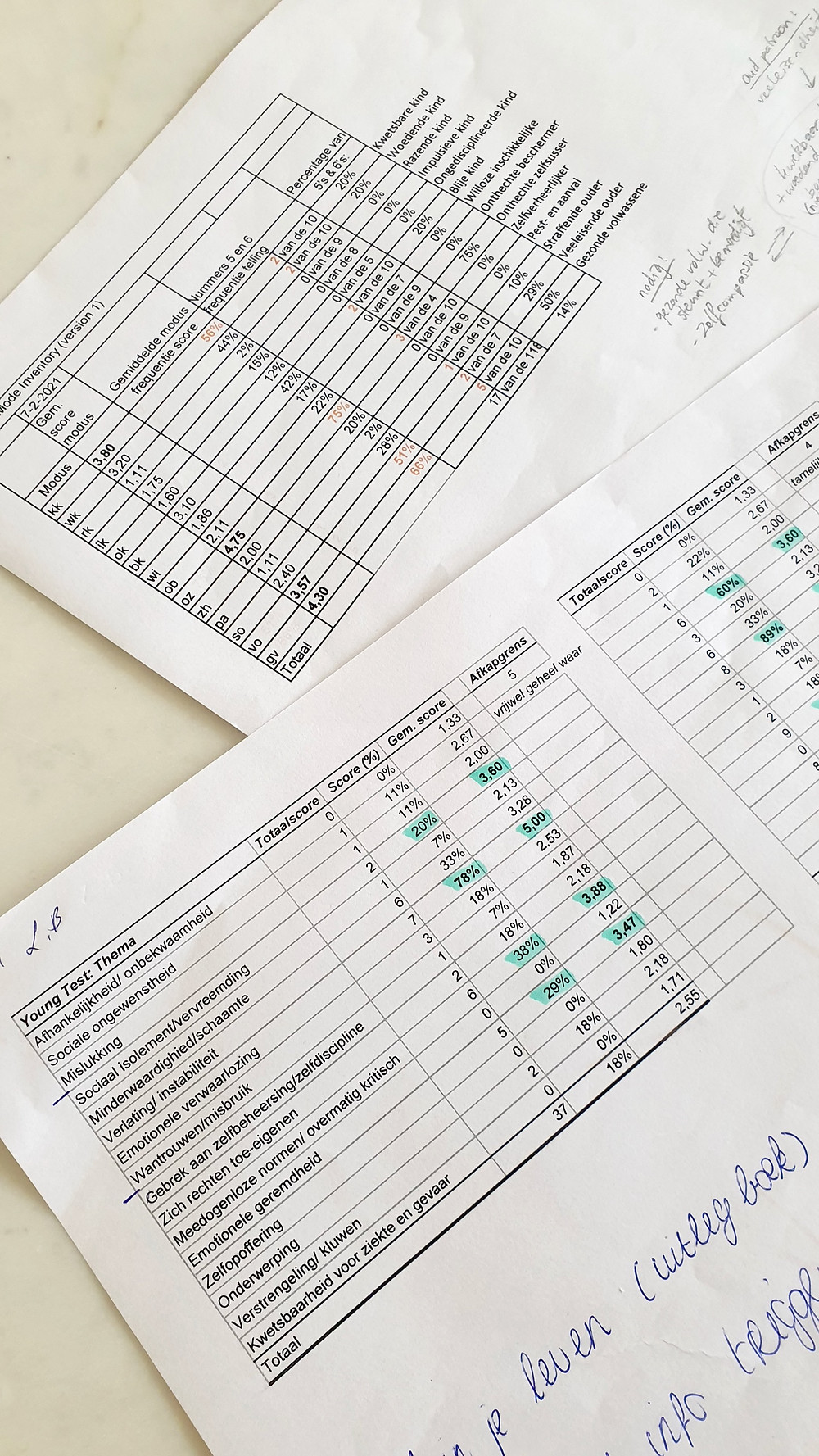 Therapie   ongerouwde rouw   Schema modi Inventory   Young Schema Questionnaire   leren echt ontspannen   Depressie   ervaring   adhd   antidepressiva   adhd medicatie   puur leven   zelfzorg   Instagram @lizaelvira.nl