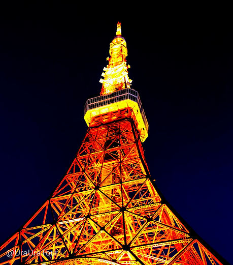 T20112802 東京タワー.jpg