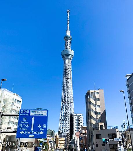 T20082903 晴天の下の東京スカイツリー.jpg