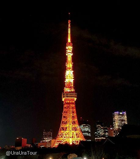 T20121802 東京タワー 夜景.jpg