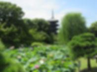 東寺1.JPG