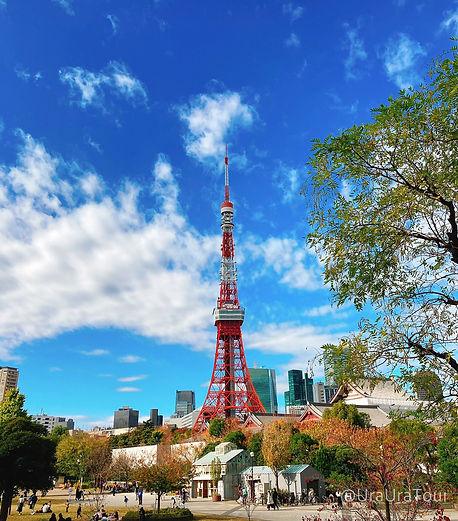 T20112301 東京タワー.jpg