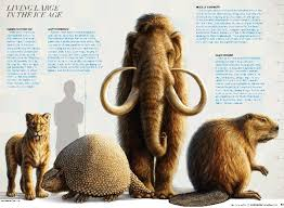 ice age mammal image today