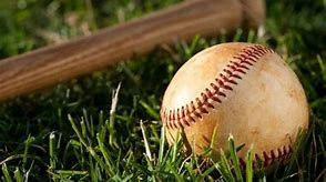 baseball real bat and ball in grass.jpg