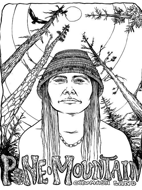 Protect Pine Mountain Original Art