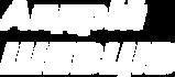 Logo Shevtsiv.png