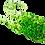 Soft Plastic Baits | Frog