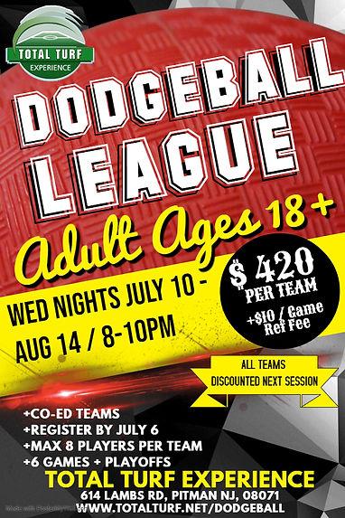 Total Turf Adult Dodgeball League.jpg