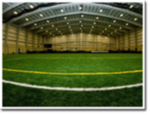 Total Turf Experience Indoor Turf Field