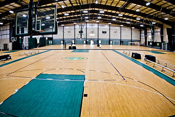 Total Turf Baskeball Court