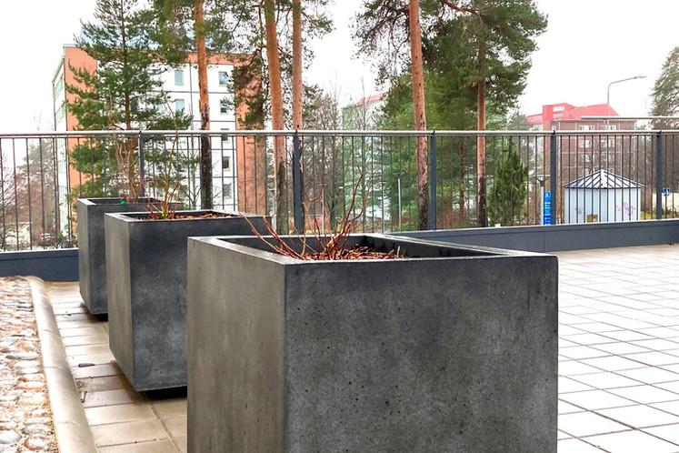 10.61_S101_kuopio_mannisto_elpac.fi_2020