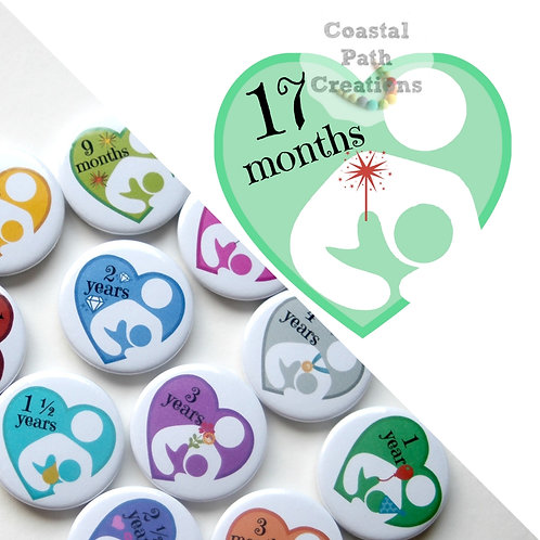 17 Months - Milestone (badge/keyring/magnet)
