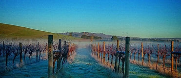 Eastern Peake Vineyard & Winery