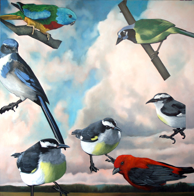 pasted birds