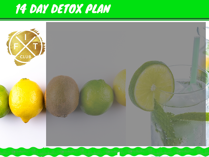 14 Day Detox - Website.png