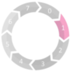 Grey Bear RIBA stage 1
