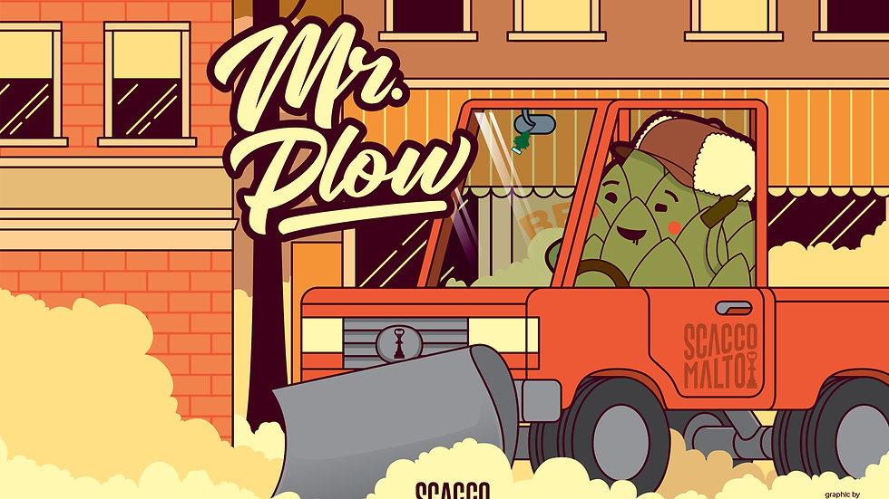 Fusto Mr. Plow