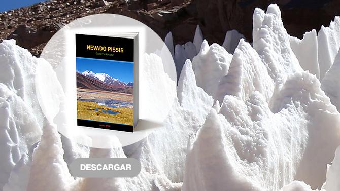 Descarga gratis el libro Nevado Pissis