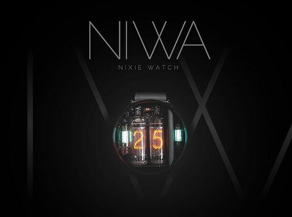SnapCrab_Custom Nixie Watch NIWA - Googl