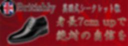 BritishlyBanner-500x181-jinseiga-1912050