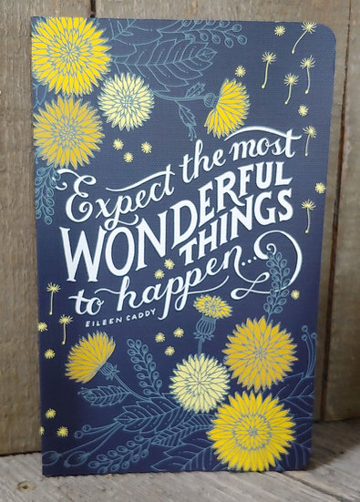 Expect Wonderful Things - Journal