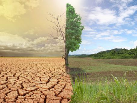 🌍 Nouveau rapport du GIEC : l'humanité ne se remettrait pas des cataclysmes à venir, la Terre si !
