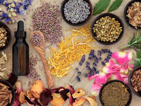 🌿 Naturopathie et alimentation végétalienne : attention aux nutriments essentiels