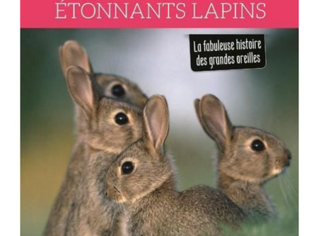 ÉTONNANTS LAPINS : LE LIVRE SUR LES GRANDES OREILLES DE PIERRE RIGAUX, NATURALISTE DE TERRAIN