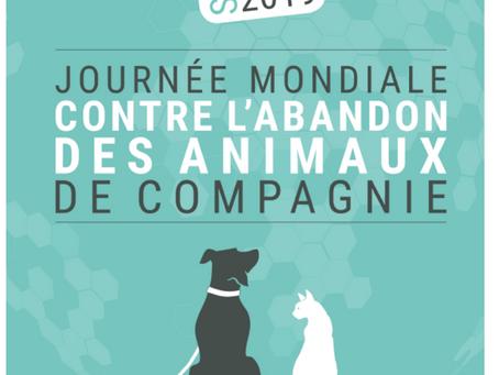 27 JUIN : JOURNÉE MONDIALE CONTRE L'ABANDON DES ANIMAUX DE COMPAGNIE