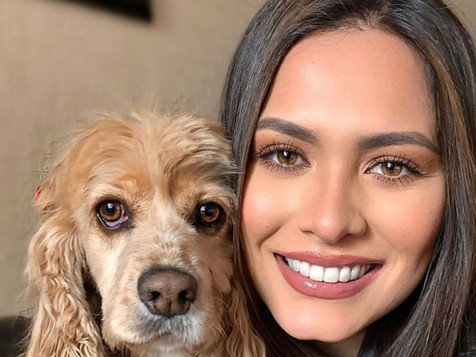 🥇 Andrea Meza, la première Miss Univers vegan engagée dans la cause animale