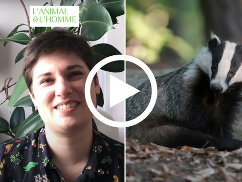 🎥 Interview d'Agatha Liévin-Bazin : araignées, oiseaux… leurs incroyables partenariats
