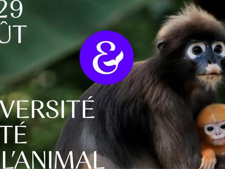 🐵 Le rendez-vous des intelligences animales : L'Université d'été 2021 aura lieu du 27 au 29 août