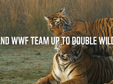 KENZO S'ENGAGE POUR LA PRÉSERVATION DES TIGRES SAUVAGES AVEC WWF