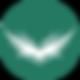 CVI-Emblem-Teal-Web.png