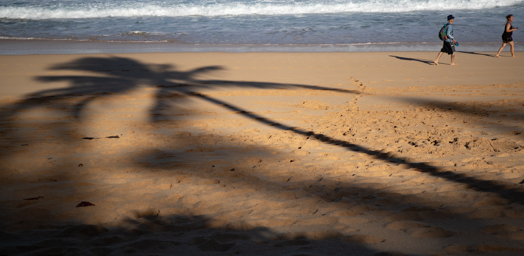 Shadow of palm trees, Off the wall