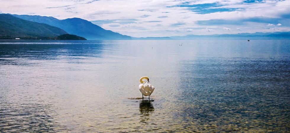 Oca en Ohrid.jpg