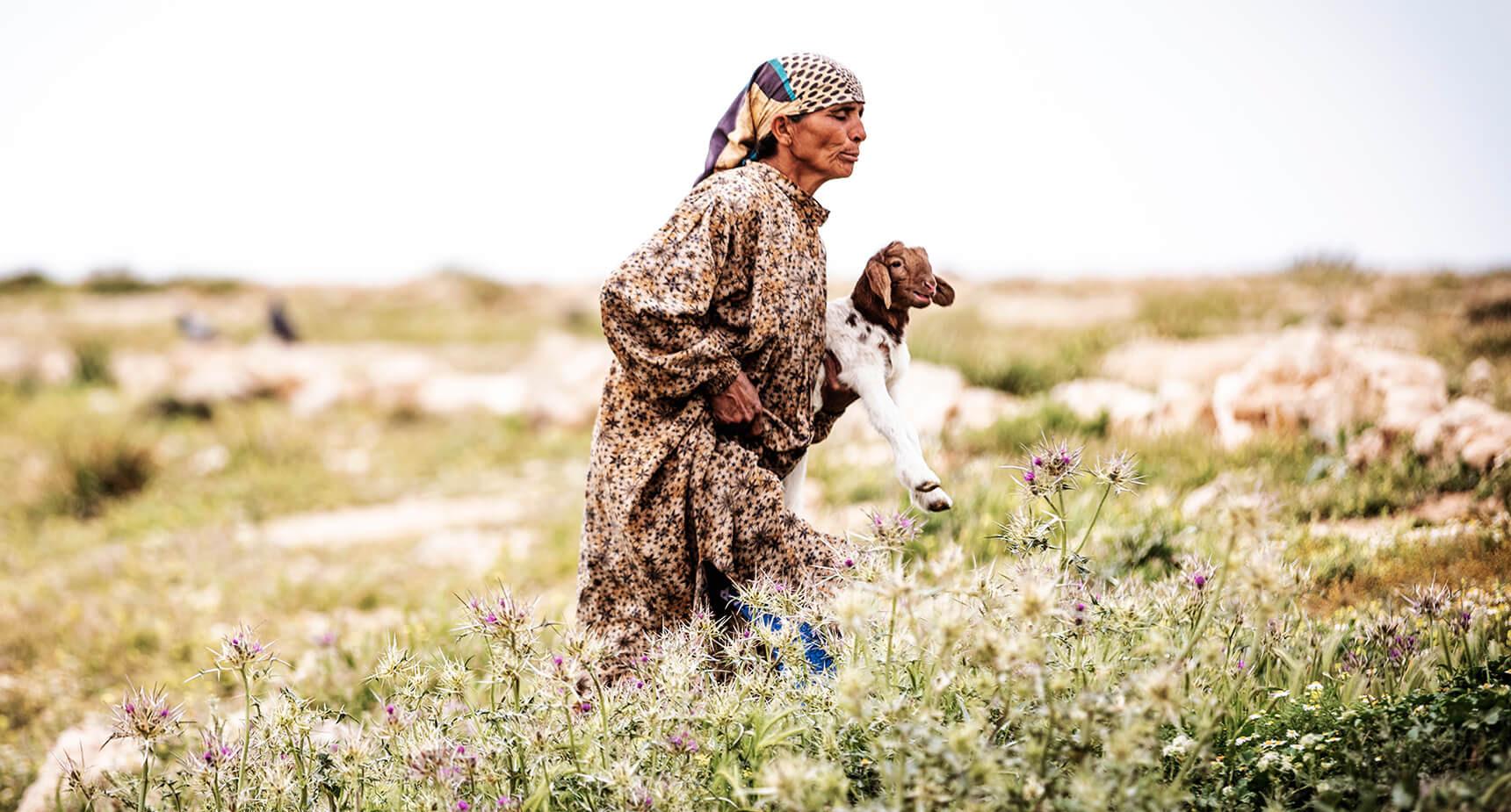 She Bedouin Herder.jpg